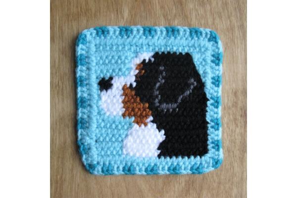 mountain dog mug rug