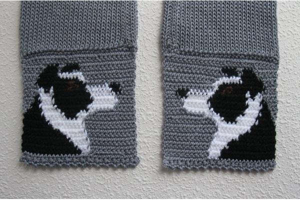 back side of dog scarf