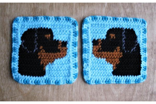 turquoise dog coasters