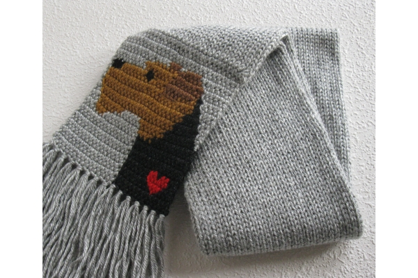 scarf full view