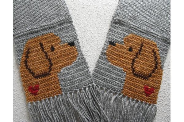 labradoodle scarf